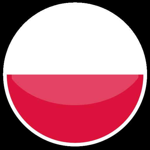 波兰VAT申报
