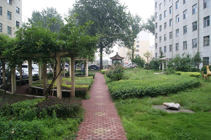 医院花园外景
