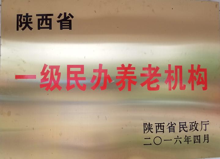 """陕西省民政厅授予""""陕西省一级民办养老机构"""""""