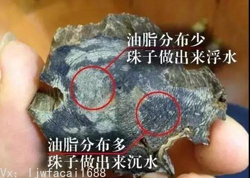 油脂分布多的地方做出來的珠子可以沉水