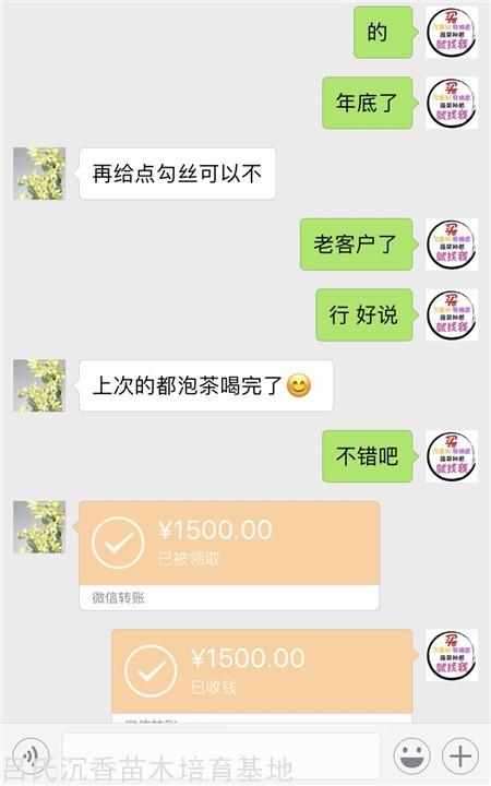 1500元奇楠沉香