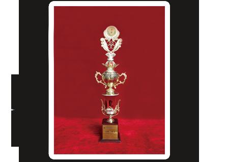 1990年香港國際白酒博覽會金獎