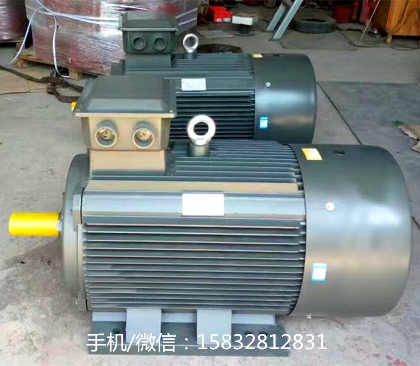 YE2電機 (2)帶水印.jpg