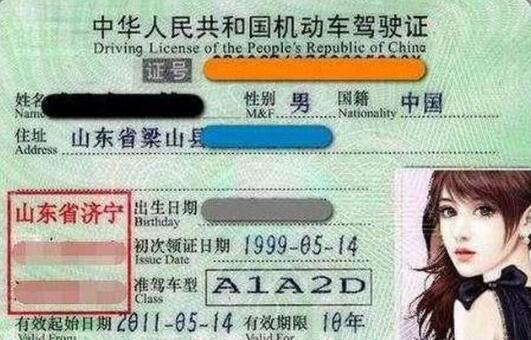 """这个驾照被称为""""全能证"""""""