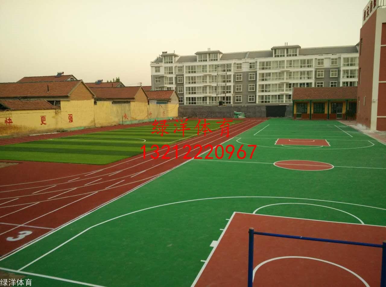 青州市何官镇李马小学龙8国际跑道及龙8国际平台入口
