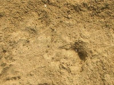 售,黄砂,包括中砂、粗砂、细砂、微砂。