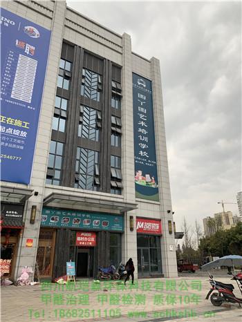 遂宁市图丫图艺术培训学校甲醛治理(除甲醛案例展示)