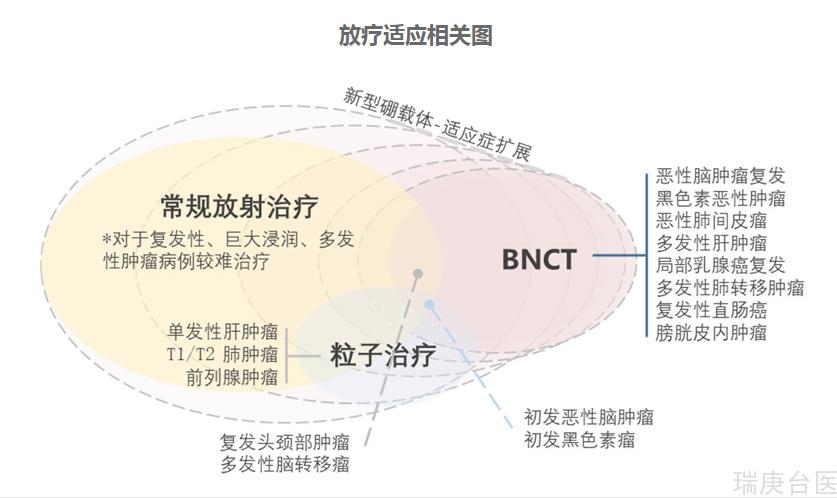 硼中子俘獲療法(BNCT)VS質子放療